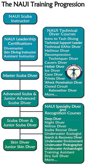 Picture of NAUI traning progression